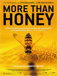more_than_honey
